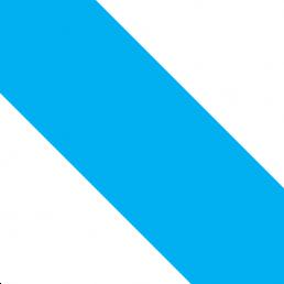 Corps Bavaria München