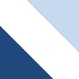 Corps Bavaria Stuttgart