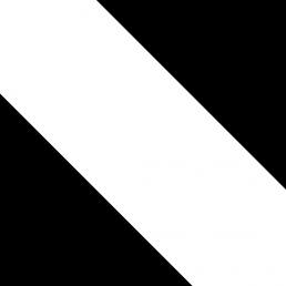 Corps Borussia Tübingen